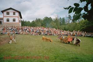 Schlacht in Hechingen